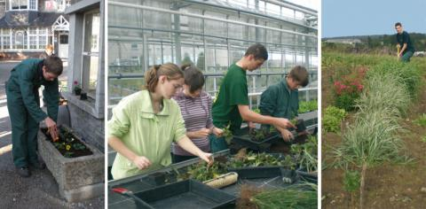 EPASC option horticulture